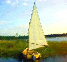 summer breeze a lot of skiff from a little wood