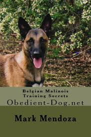 belgian shepherd navy seals belgian malinois training secrets obedient dog net mark mendoza