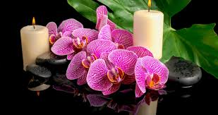 spa candles and orchid 4k ultra hd wallpaper high quality walls