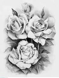 223 best flowers images on pinterest sketches art projects and