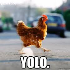 Chicken Running Meme - amazing 26 chicken running meme wallpaper site wallpaper site