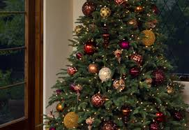 christmas tree deals tremendous best christmas trees tree brands with lights