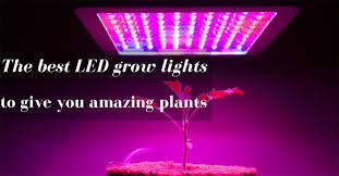 the best led grow lights to give you amazing plants gardening