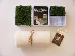watercress sprout kits what our company brings to you affordable