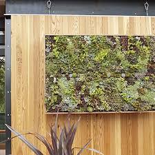 diy vertical succulent garden panels by flora grubb apartment