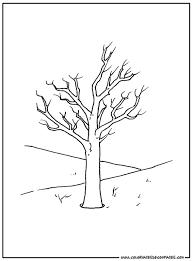 Arbre 101 Nature  Coloriages à imprimer