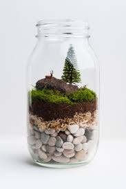 25 unique mason jar terrarium ideas on pinterest mason jar