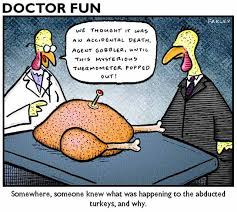 Happy Thanksgiving Funny Images Have Fun This Thanksgiving 16 Funny Pics Funny Pictures