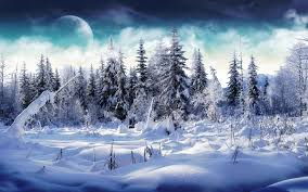 snow and snowflakes images winter hd wallpaper and background