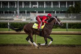 Are Horses Color Blind Kentucky Derby 2017 Horses Full Lineup Favorites And Sleepers In