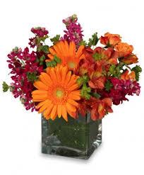 greenville florist floral exuberance arrangement in greenville oh helen s flowers