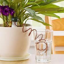 aliexpress com buy 8pcs plants automatic watering system self
