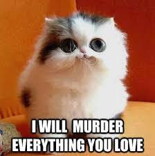 Meme Kitty - animal memes psycho kitty funny memes