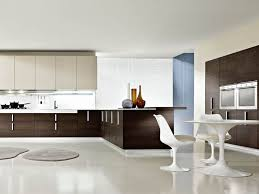 Modern Kitchen Color Combinations Minimalist Kitchen Design Color Combination