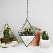 large glass terrariums for sale hanging glass terrarium extra