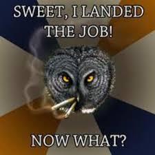 Art Owl Meme - art professional owl by fablepaint on deviantart
