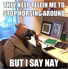 Soon Horse Meme - gt get back in the saddle heal up soon 130920773 added by