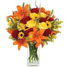 send flowers online calyx flowers order flowers send floral bouquets plants