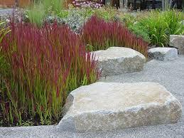 32 best ornamental grass images on gardening