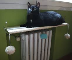 Instructables Cat Tree by Cat Radiator Shelf And Play Zone 6 Steps With Pictures