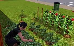 What To Plant In Your Vegetable Garden by The Sims 3 Gardening Guide Fertilizer Secrets Tips And Help