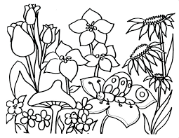 coloring pages to print spring flowers for coloring pictures spring flower pages printable page