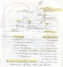 Cranial Nerves Worksheet Sgu Notes