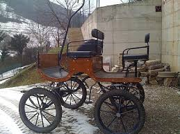 carrozze in vendita attacchi attrezzature annunci cavalli e puledri in vendita