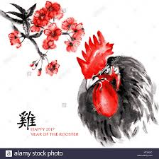 vector greeting card chinese new year rooster and branch of