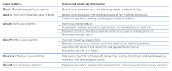 Sk Ii Sle diagnosis and treatment of lupus nephritis consensus document from