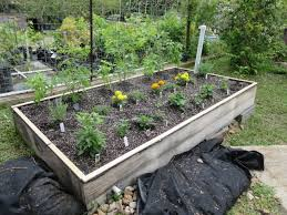Horse Manure Vegetable Garden by The Scoop On Adding Manure Compost To Your Garden Rainbow