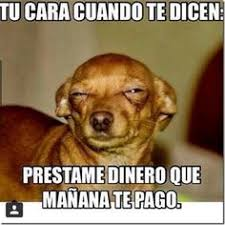 Spanish Memes Funny - the exact moment he realized he was heading to the ve never mind