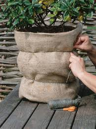protecting garden pots during winter hgtv