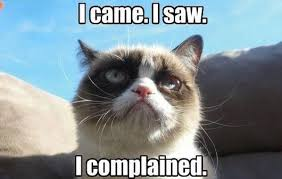 Angry Cat Memes - annoyed cat memes image memes at relatably com