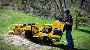 stump grinder rental near me stump grinder hydraulic rentals st joseph mi where to rent stump
