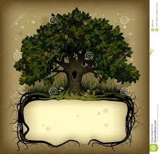 oak tree wih a banner stock vector image of fashioned 18565949