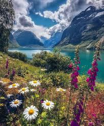 beautiful nature bdfjade