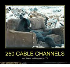 Cable Meme - 250 cable channels and there s nothing good on tv very d ionalcom