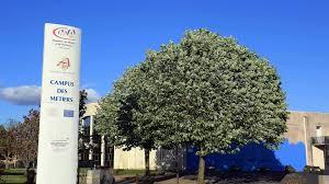 chambre des metiers de niort cus des métiers de niort 17 m d investissement