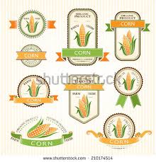 corn labels vegetables color package decorations stock vector