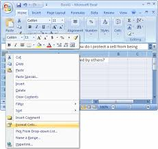 ms excel 2007 protect a cell