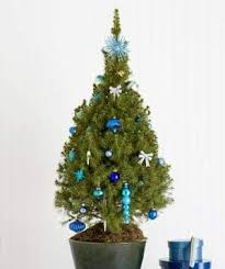 Photos Of Small Decorated Christmas Trees by Festive Christmas Tree Decorating Ideas Real Simple