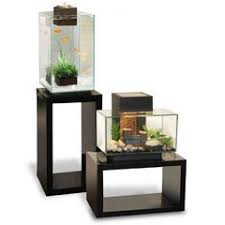 fluval chi aquarium fish tank 19 litre amazing amazon