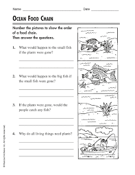 free printable worksheets food chain web in template sample with