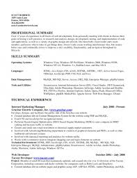 Career Summary Resume Example by The Amazing Skills Summary Resume Example Resume Format Web