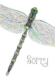 Unique Dragonfly Gifts Unique Art Gifts Dragonfly Sorry Card Wraptious Greetings Card