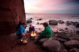 light and go bonfire light n go bonfire logs full pallet 96 logs free nationwide
