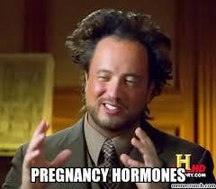 Pregnancy Hormones Meme - hormones