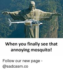 Mosquito Meme - 25 best memes about mosquito mosquito memes