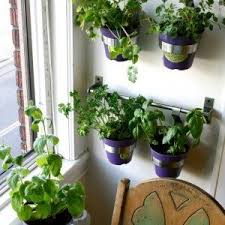 vertical wall planters indoor in white walls house wall planters